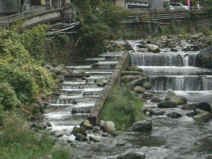 川の流れ~
