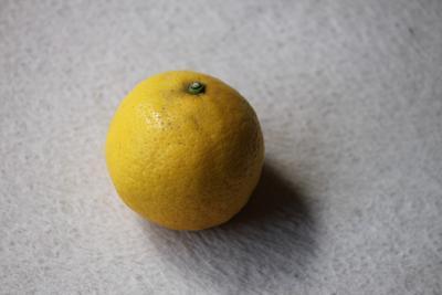 ニューサマーオレンジ!