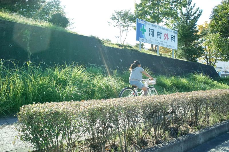 自転車でゆく