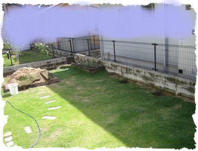 20081006-3.jpg