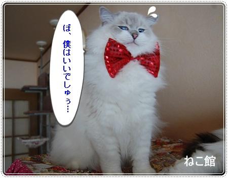 blog2_2013122513564502a.jpg