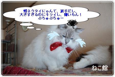 blog3_2013122513564763e.jpg