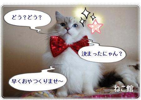 blog6_201312251356543ef.jpg