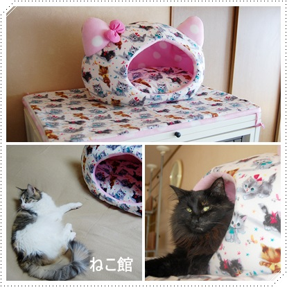 blog_201401192218103c3.jpg