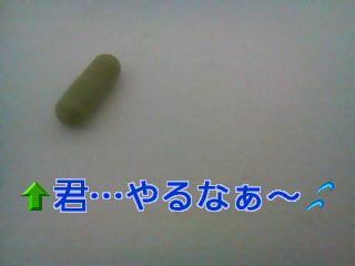 005_convert_20110713203825.jpg