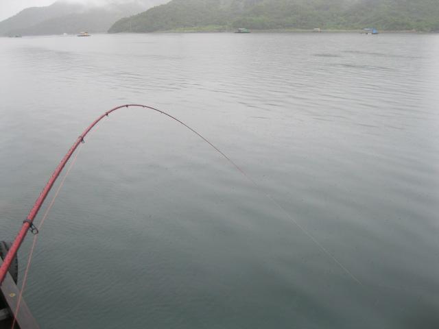 赤いラインが海中に突き刺さっております(礼)