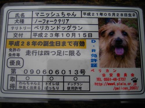 2011.10.15~17 033