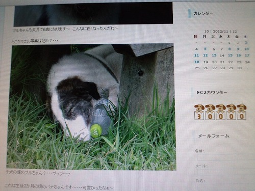 moblog_9476513f_20121122202825.jpg