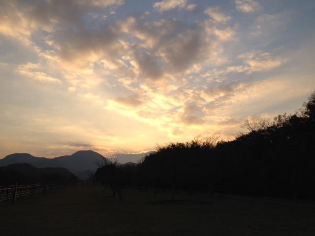 写真 お散歩2