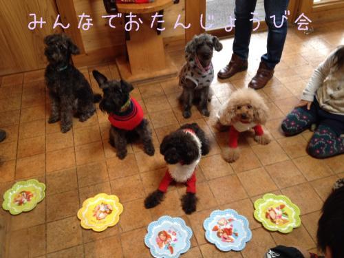 写真+お誕生日会_convert_20140113205406
