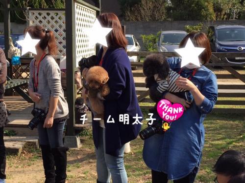IMG_0609明太子チーム_convert_20141126223517