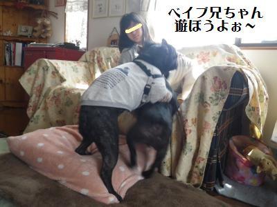 7_20110328221149.jpg