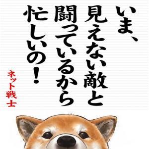 ネット戦士(柴犬)