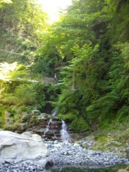 アッチ沢と林道