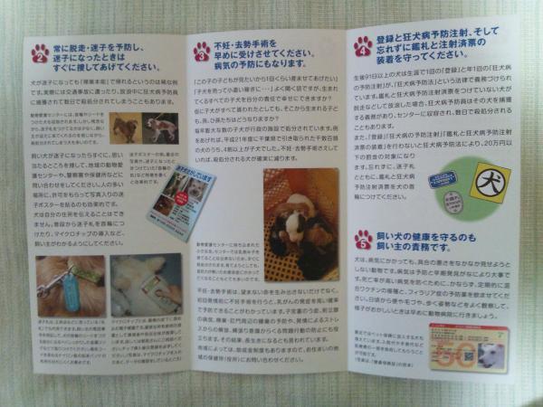 DSC_0030_convert_20120317231203.jpg