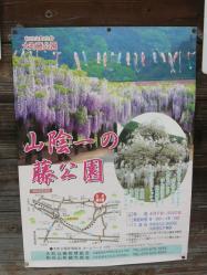 20110509藤公園~♪