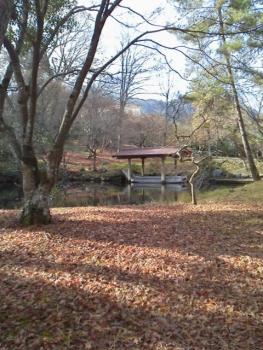 20131211大本さん5