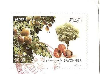 アルジェアN切手20114