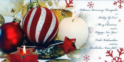 2013-1(ティムからクリスマス)