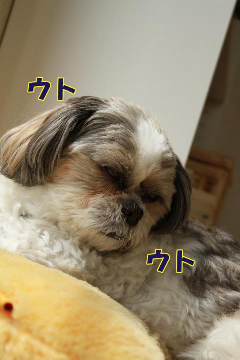 002_20110613180055.jpg