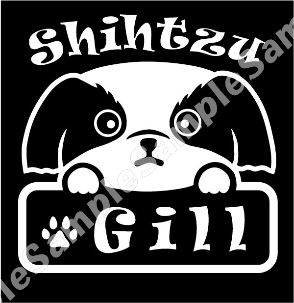 sizu_a209_gillのコピー