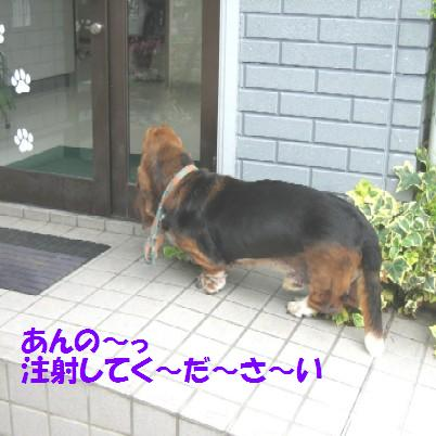 IMG_0627-1.jpg