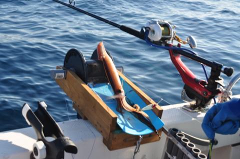 イカ釣りローラー2