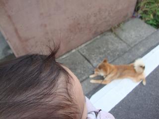 髪のびた!