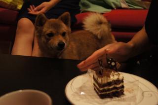 ケーキですか?