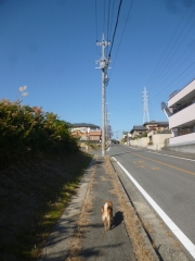 P1170630.jpg