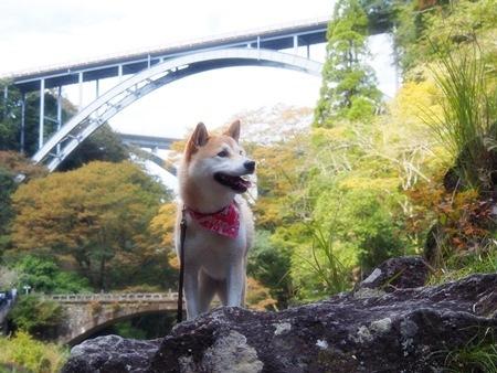 三つの橋だよ~