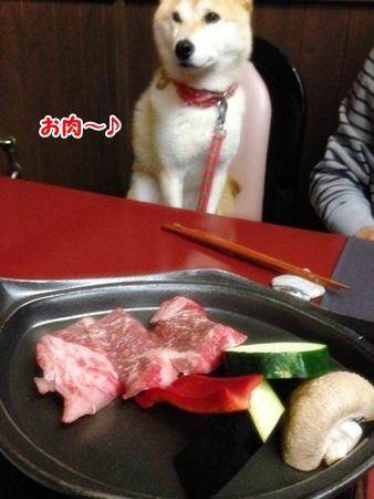 お肉どすな
