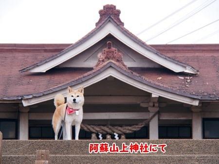 山上神社にて