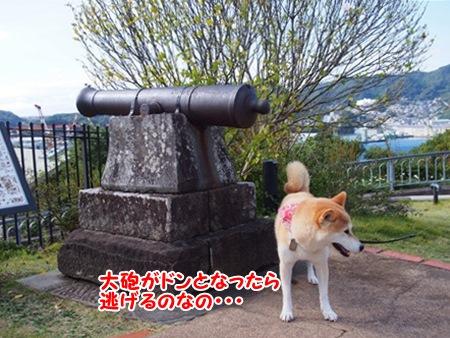 大砲・・・
