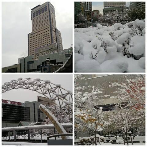 平成26年11月15日札幌