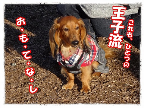 2013_11_21_6.jpg