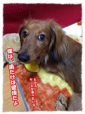 2013_12_19_2.jpg
