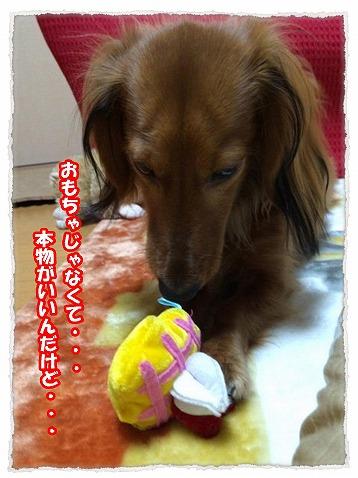 2013_12_19_3.jpg