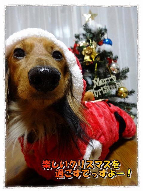 2013_12_25_1.jpg