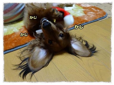 2013_12_26_4.jpg