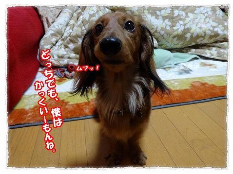 2013_12_27_2.jpg