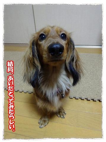 2013_12_29_1.jpg