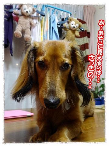 2013_12_30_6.jpg
