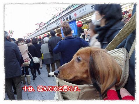 2014_1_14_1.jpg