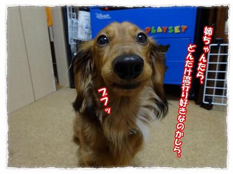 2014_1_18_1.jpg