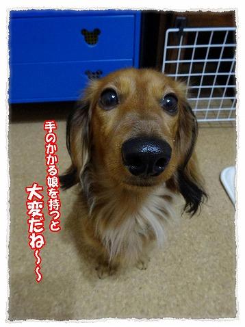 2014_1_18_3.jpg