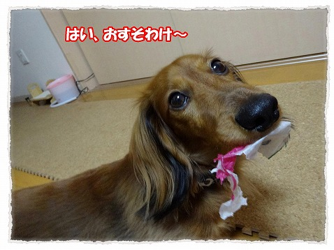 2014_1_21_5.jpg