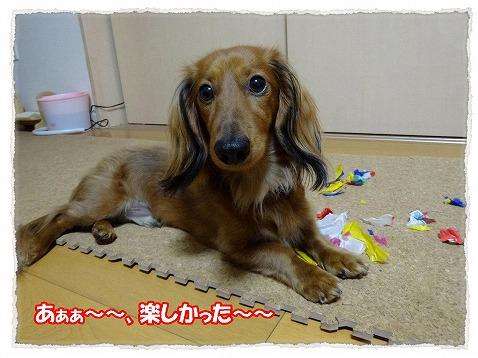 2014_1_21_6.jpg