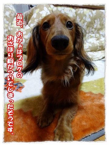 2014_1_23_1.jpg