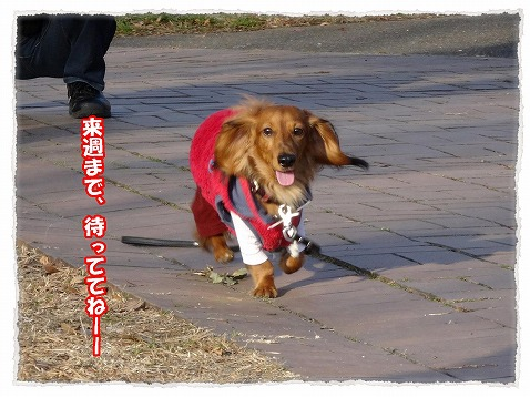 2014_1_4_2.jpg